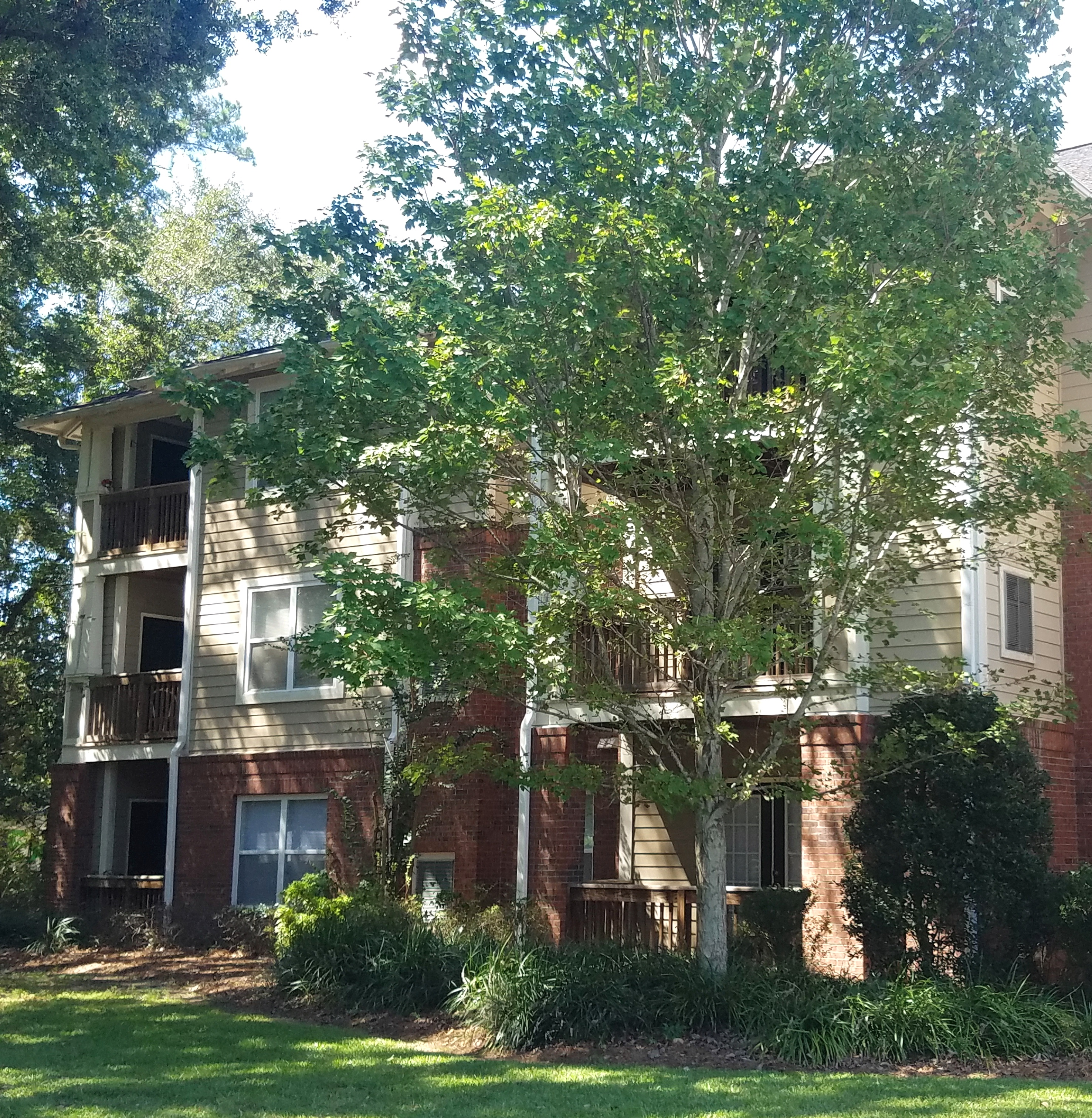 Apartments In Charleston Sc With Utilities Included: Shady Grove Apartments